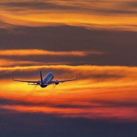 SkyUp Airlines призупиняє польоти до Шарджі.