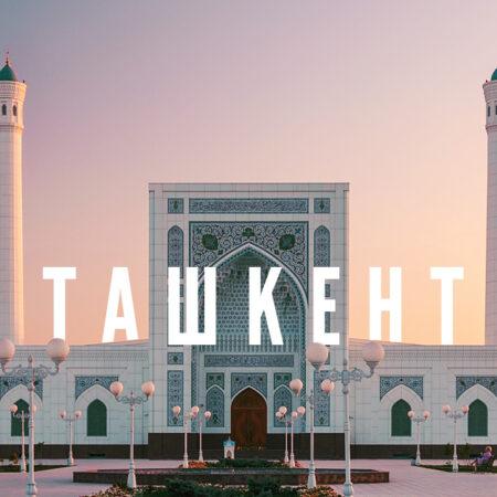 SkyUp і Роза Вітрів виконають серію рейсів в Узбекистан