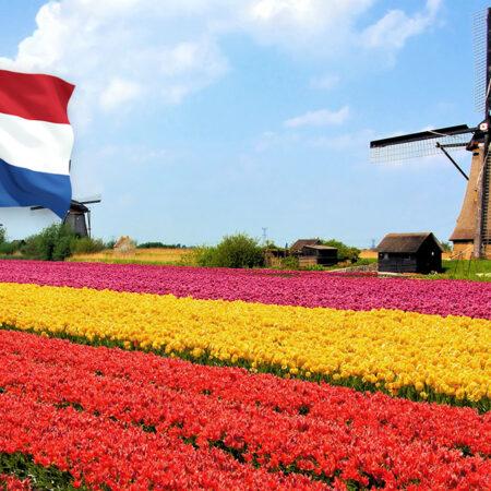 Зміна умов надання тестів для подорожі в / через Нідерланди